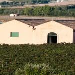 La struttura è stata pensata per essere architettonicamente in sintonia con il territorio e con le tradizioni del luogo.