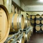 Sotto terra, la grande barricaia ospita oltre 700 barriques in cui avviene l'affinamento di alcuni dei nostri vini più rappresentativi, tra cui lo storico Chardonnay.