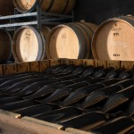 Etna's black stone is the dominant architectural element in the barrel store also, to which we gave the appearance of an old stone workshop, combining an interesting solution of bio-architecture with an activity of cultural recovery.