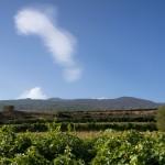 Hospitality at Etna