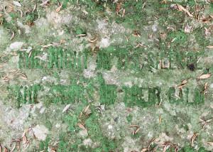 Cimitero inglese, Maniace